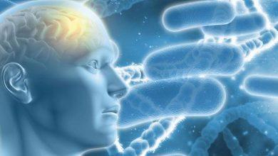 Photo of दिल की बातें साझा करने से कम होता है अल्जाइमर का जोखिम